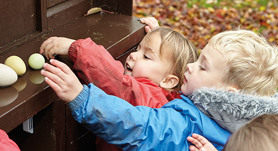 two kids in jackets reaching for eggs on a shelf with fall leaves in the background