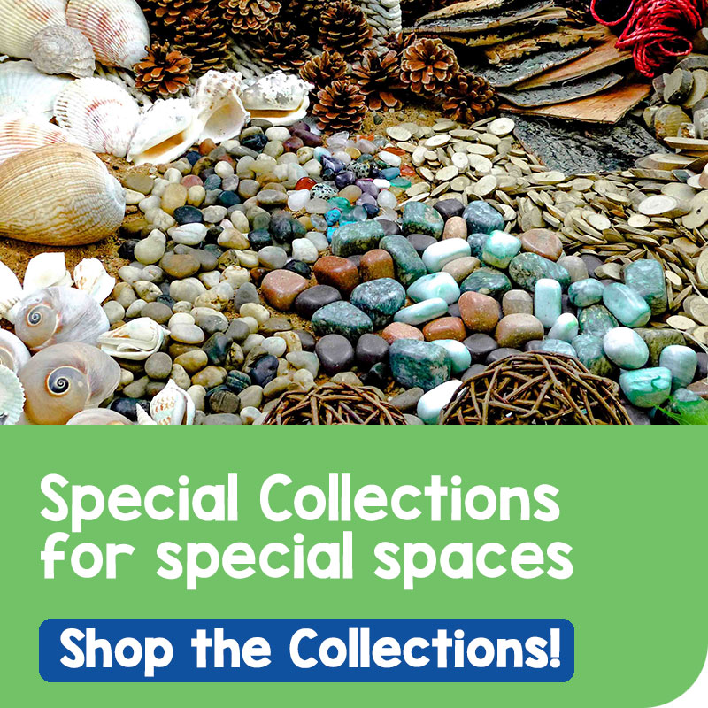 Sea shells, rocks & pine cones. Special collections for special spaces.