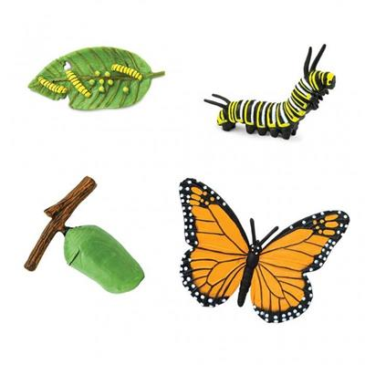 Monarch Butterfly Life Cycle Figurines