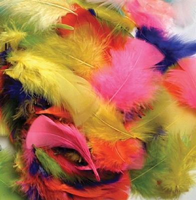 Feathers, Bright Colours