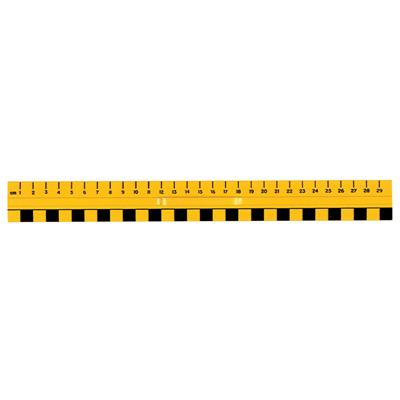 Primary Rulers, Set of 10