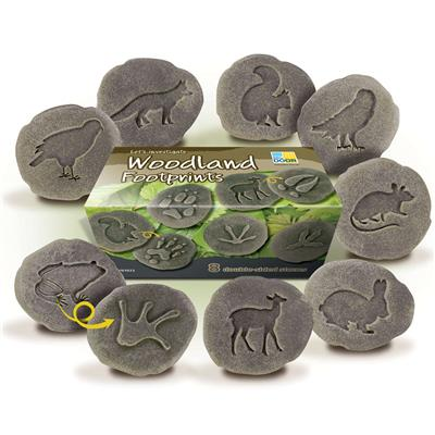 Let's Investigate Woodland Footprints, 8 Pieces